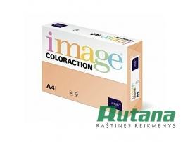 Spalvotas biuro popierius Image Coloraction Nr.21 lašišos sp. A4 80g 500l. 617021