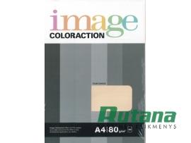 Spalvotas biuro popierius Image Coloraction Nr.13 kreminė A4 80g 50l. 6113