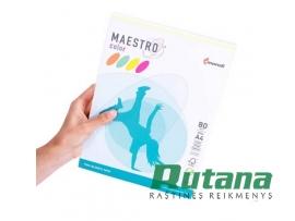 Spalvoto biuro popieriaus Maestro Color neoninių spalvų rinkinys A4 80g 200l.