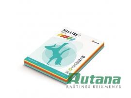 Spalvoto biuro popieriaus Maestro Color intensyvių spalvų rinkinys A4 80g 250l.