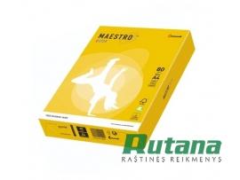 Spalvotas biuro popierius Maestro Color garstyčių sp. A4 80g 500l. IG50
