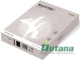 Spalvotas biuro popierius Maestro Color pilkas A4 80g 500l. GR21