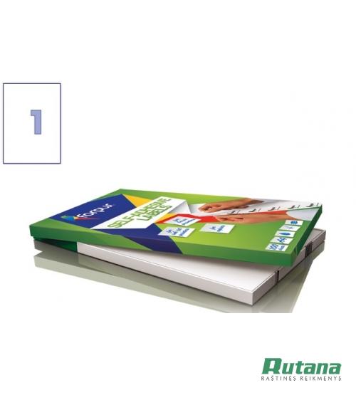 Lipnios etiketės A4/210 x 297 mm 100 lapų Forpus 41536