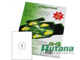 Lipnios etiketės A4/210 x 297 mm 100 lapų Rillprint 89124