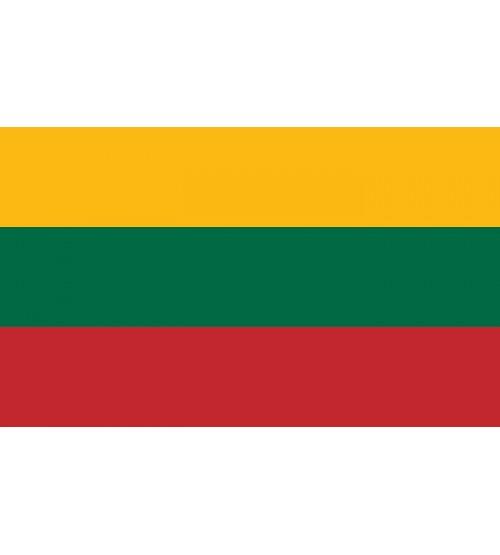 Lietuvos Respublikos vėliava 100 x 170 cm