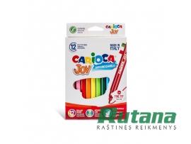 Flomasteriai JOY Carioca 12 spalvų Universal 40614