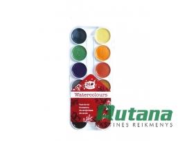 Akvarelė 24 spalvų College 312060