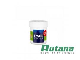 Guašas baltas 40 ml indelyje Rosa 51115
